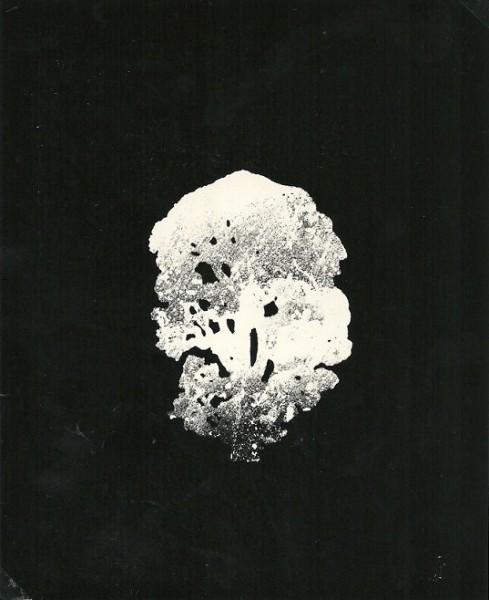 Mutazione,1980-collage poliestere cm. 54x42