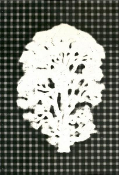 Mutazione, 1979-collage poliestere  cm.56x40