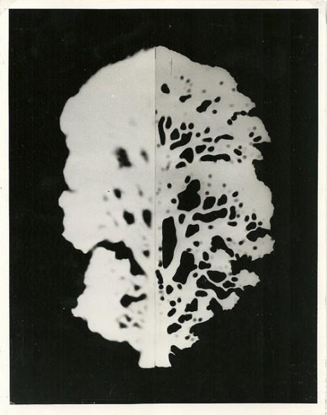 Mutazione, 1980-collage poliestere cm. 50x40